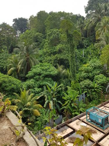 Over 1ac of designated greenery, only one  in Damansara Heights.